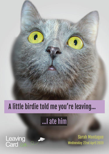 A greeting card showing a cat saying sorry you are leaving