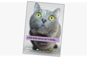 An example card showing a cat and the words 'A little birdie told my you're leaving...'